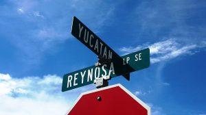 Yucatan Cabezon